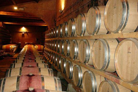 Die richtige Weinlagerung, warum so wichtig?