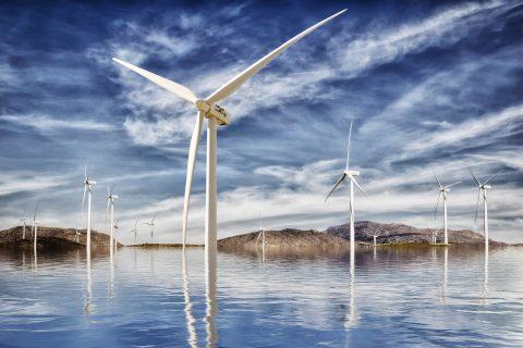 Erneuerbare Energien in der Landwirtschaft – vom Landwirt zum Agrarwirt